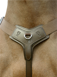 Quality Handmade English Leather Martingale and Breastplate from Sabre Leather Company